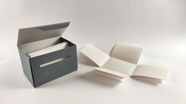 Enveloppes et boîtes de conditionnement pour les plaques de verre restaurées / EFA, Fonds J. Chamonard, cl. D. Griva